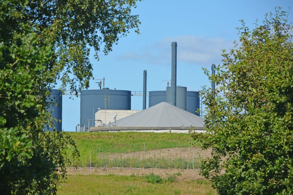 Gyllen opbevares i reaktorerne i tre uger, og undervejs rådner gyllen alt i mens der dannes biogas.