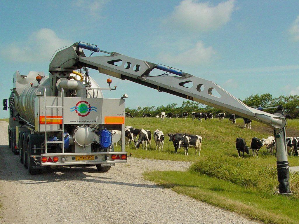 Gylletransport, tankvogn ved gården, køer på marken i baggrunden